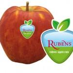Rubens appel